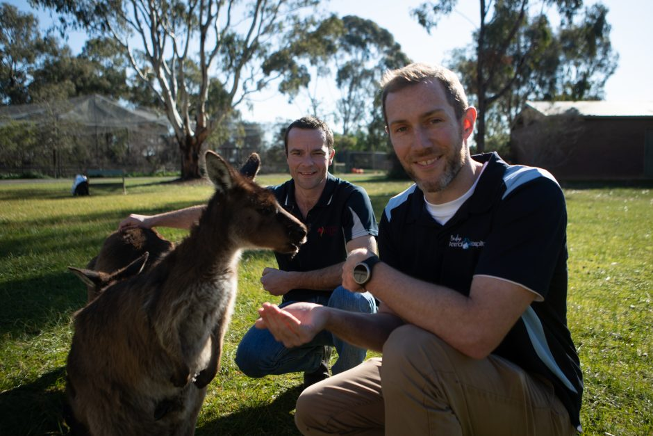 03. Ep07_Chris & Mike feeding kangaroos