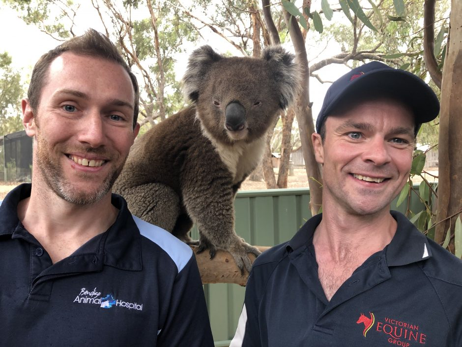 05. Ep01_Dr Chris & Dr Mike with Koala