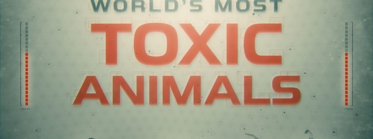 ToxicAnimals_Poster_01